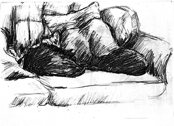 Two Sleeping Cats  (pencil drawing) ©irenejuliawise