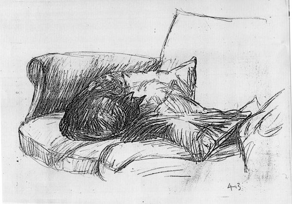 Cat on the Sofa with Cushions (pencil drawing) ©irenejuliawise