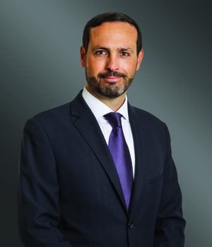 Oscar Stephens Shareholder, Greenberg Traurig