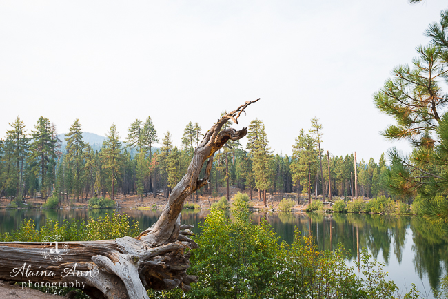 Lassen Volcanic National Park | Travel (127/556) | Alaina Ann Photography