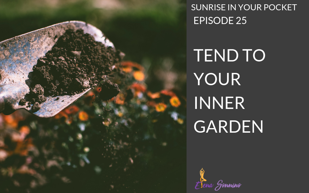 EP 25 sunrise in your pocket tend to your inner garden