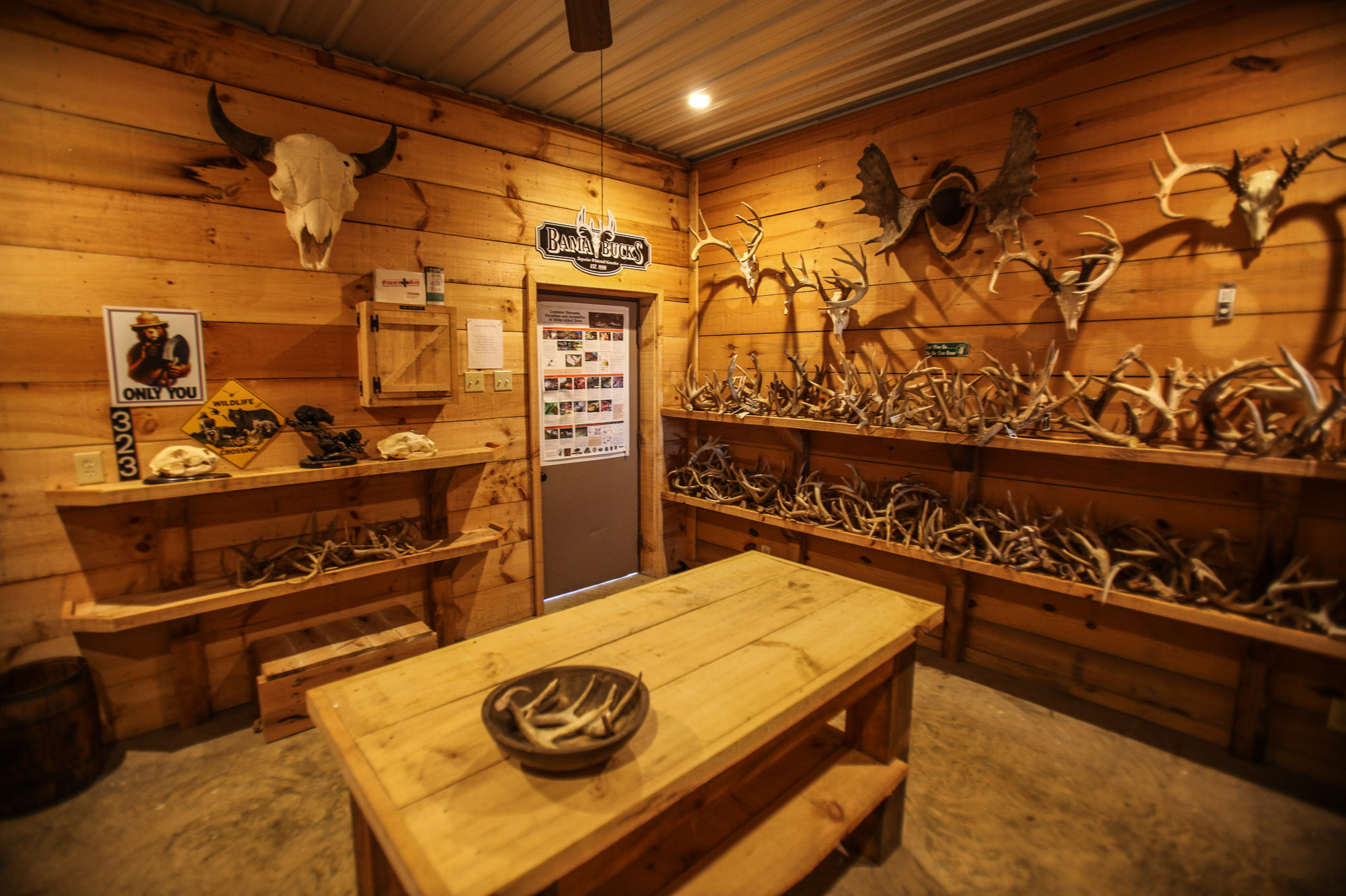 Before touring the exotic animal park, take the time to visit the antler room, there you'll find a variety of antlers and information about the animals in our park.