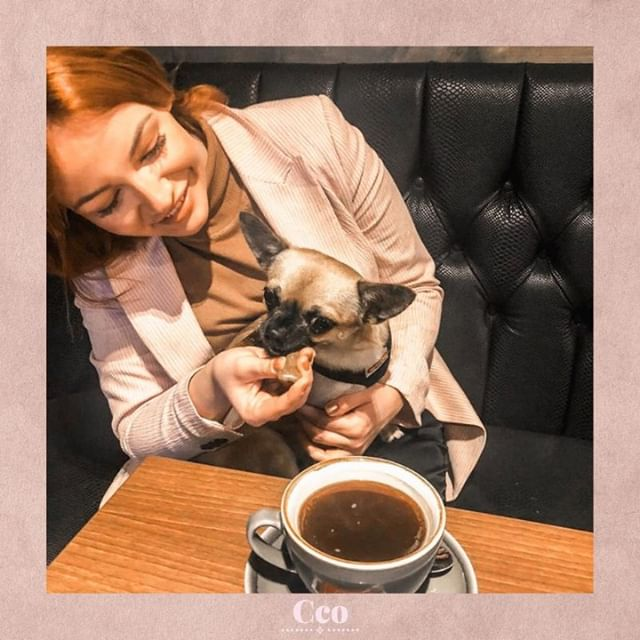 🐶 The face you make when someone is trying to give you an energy bite but all you really want is the coffee right in front of you... 😏⠀⠀⠀⠀⠀⠀⠀⠀⠀ ⠀⠀⠀⠀⠀⠀⠀⠀⠀ Double Tap if you can relate! 🙌☕️⠀⠀⠀⠀⠀⠀⠀⠀⠀ ⠀⠀⠀⠀⠀⠀⠀⠀⠀ ⠀⠀⠀⠀⠀⠀⠀⠀⠀ .⠀⠀⠀⠀⠀⠀⠀⠀⠀ .⠀⠀⠀⠀⠀⠀⠀⠀⠀ .⠀⠀⠀⠀⠀⠀⠀⠀⠀ .. #selfconfidence #selflove #love #innerwork #selfdevelopment #business #businesswoman #businesswomen #womeninbiz #biz #businessboss #bossbabe #girlboss #glamboss #confidence #confidencecoach #saloncoach #salonstrategy #clients #onlinebusiness #beautysalon #beautysalonowner #womenentrepreneur #entrepreneurship #doglife #dogsofinstagram #caffeine #coffee
