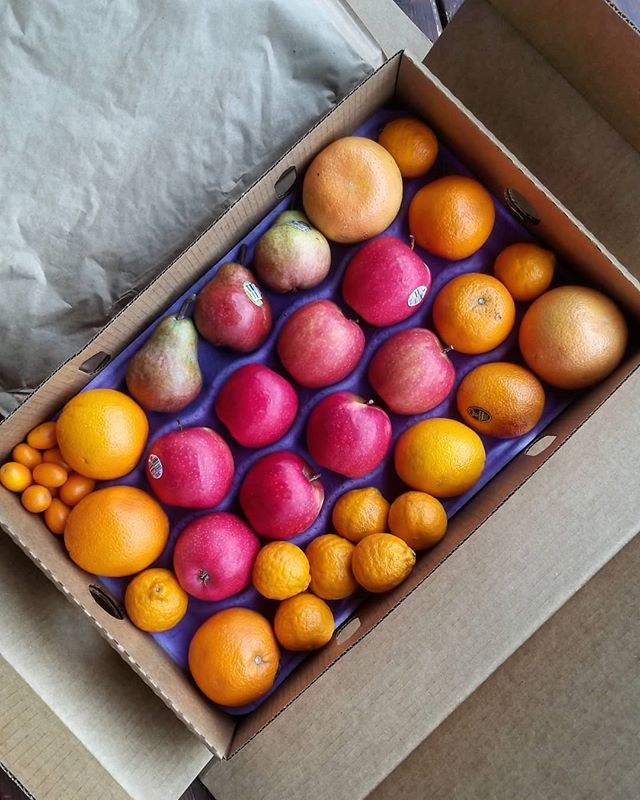 First fruit box delivery of the year! I'm so excited to dig into this one. All share types are still available - let us know if you want get in on the next delivery on April 24! More info in bio link🍎🍊#organic #knowyourfarmer #smallscalefarming #fruitlove