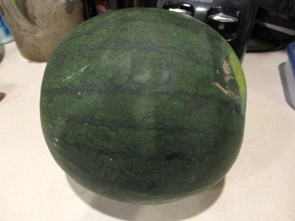Watermelon2019.jpg