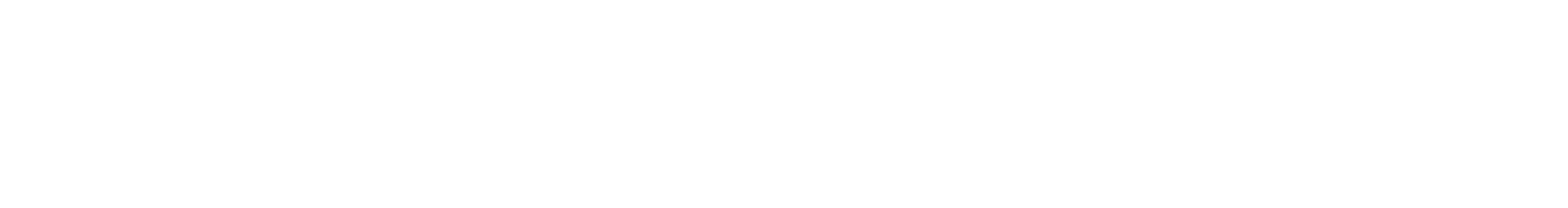 verge white.png