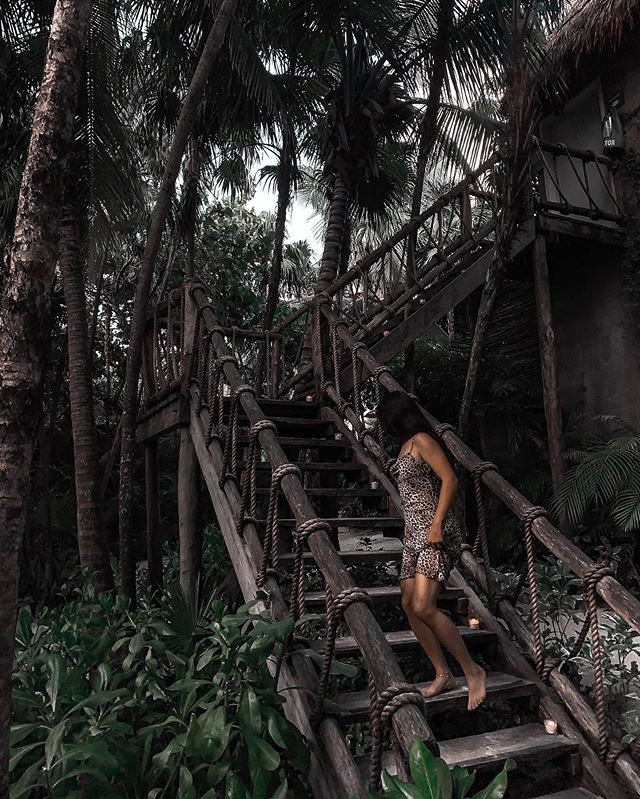 I've been running through the jungle, I've been running with the wolves, To get to you, to get to you . . . . . . . #instatravels #traveladdicts #travelingtheworld #travelpassion #travellingtheworld #travellingram #instatravelgram #travelblogging #neverstoptraveling #borntotravel #travelforlife #traveldaily #keeptraveling #travelescape #bucketlisttravel #igpassport #explorewithme #traveltoexplore #travelphotooftheday #travelpicsdaily #travelingpost #travelcaptures #tulummexico #caribbeaninspo #nomadetulum #tulummexico #caribbeaninspo #tulumtulum #travelstribe #besthotels
