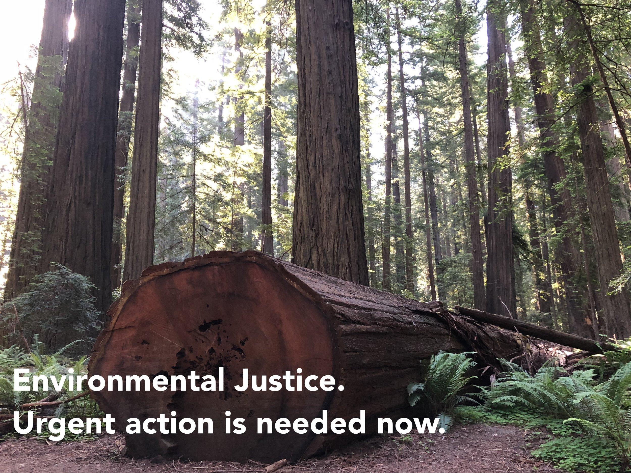 Environmental Justice.jpg