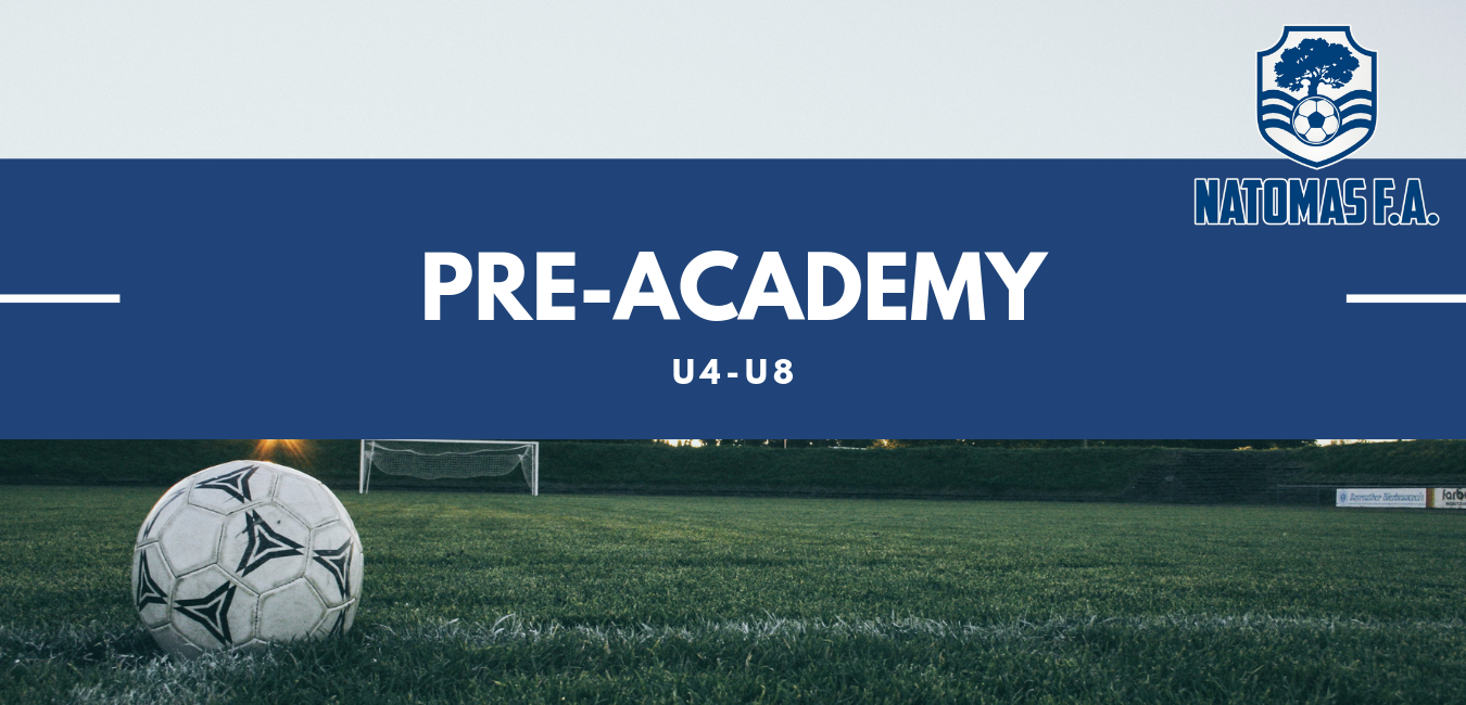 NFA Pre-Academy.png