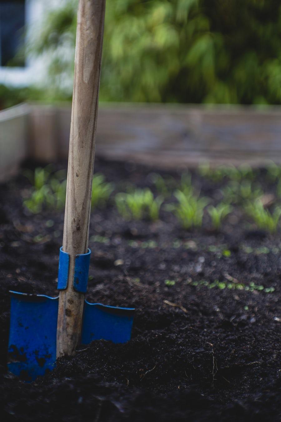 photo-gardening2.jpg