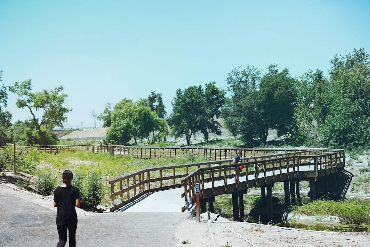 deforestpark2.jpg