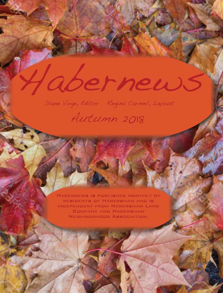 Habernews_Autumn_2018