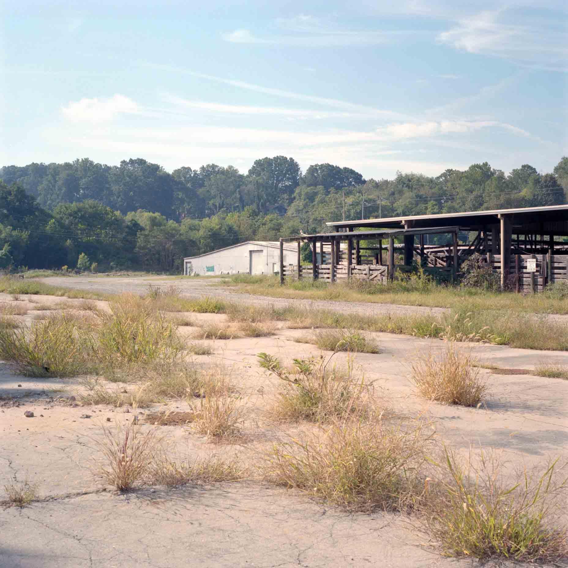 stockyards12.jpg