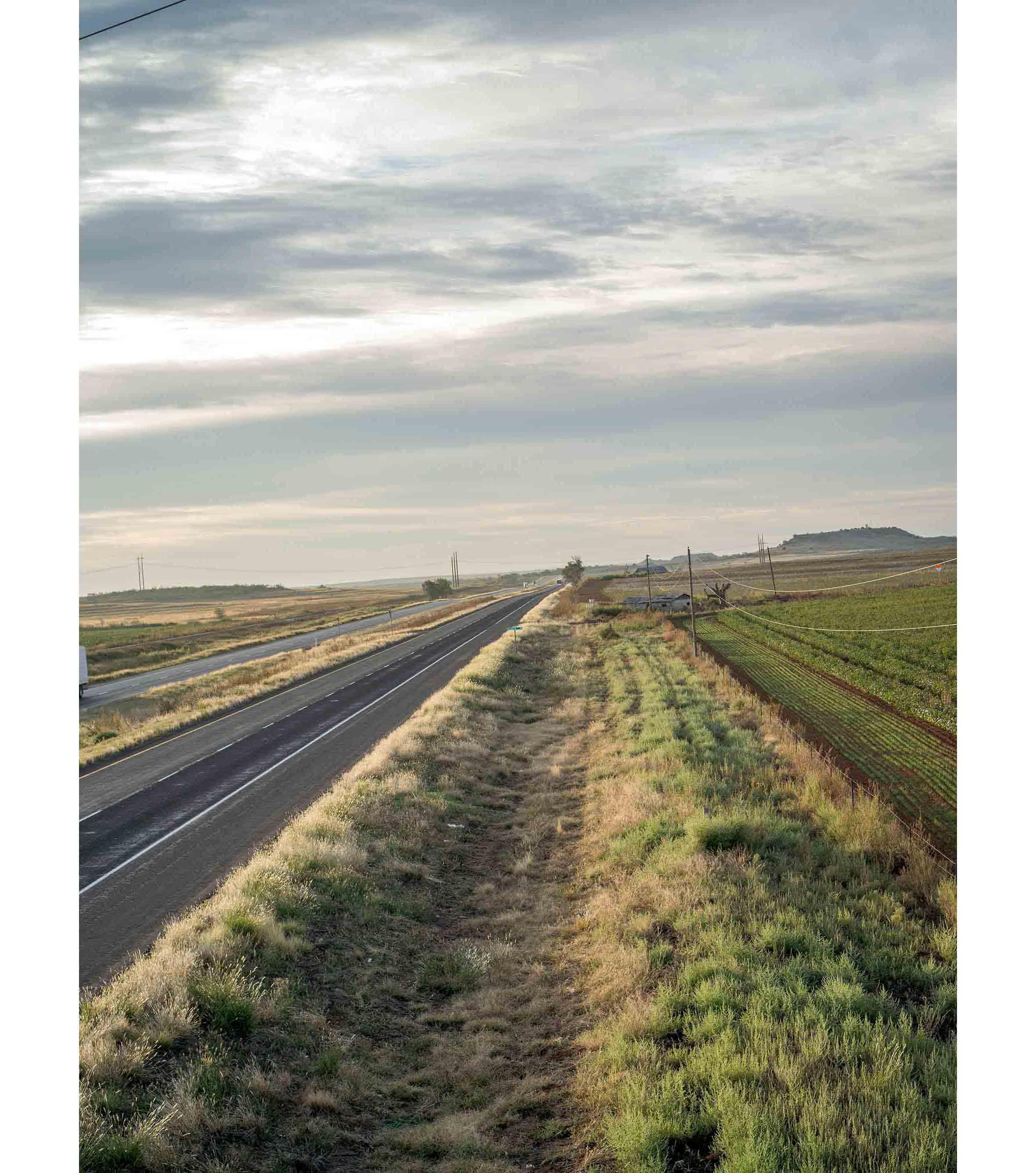 Cottonfields03.jpg