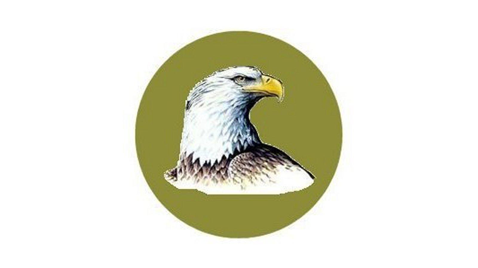 explore-eagle-icon.jpg