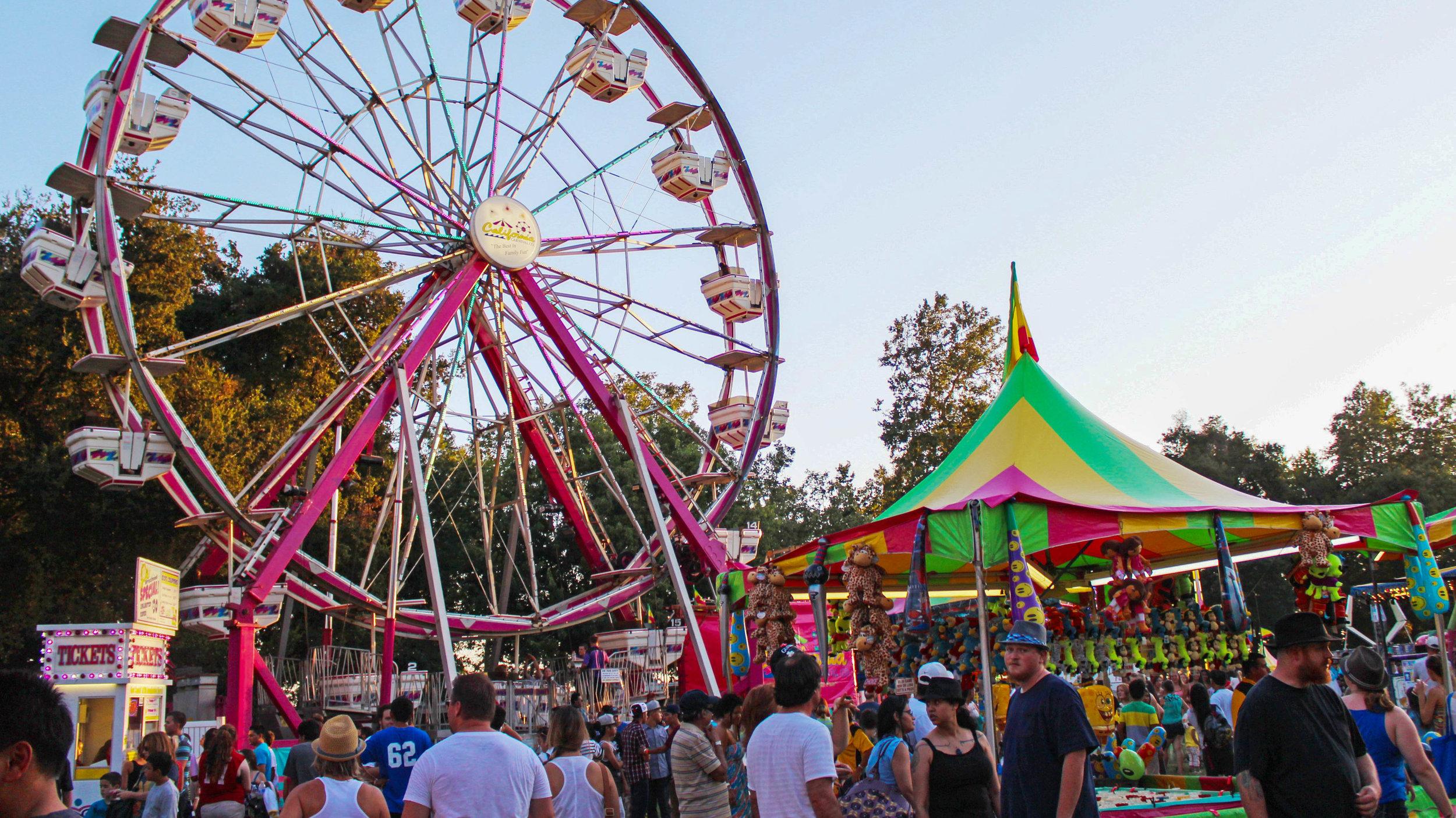 county-fair-alr-2.jpg