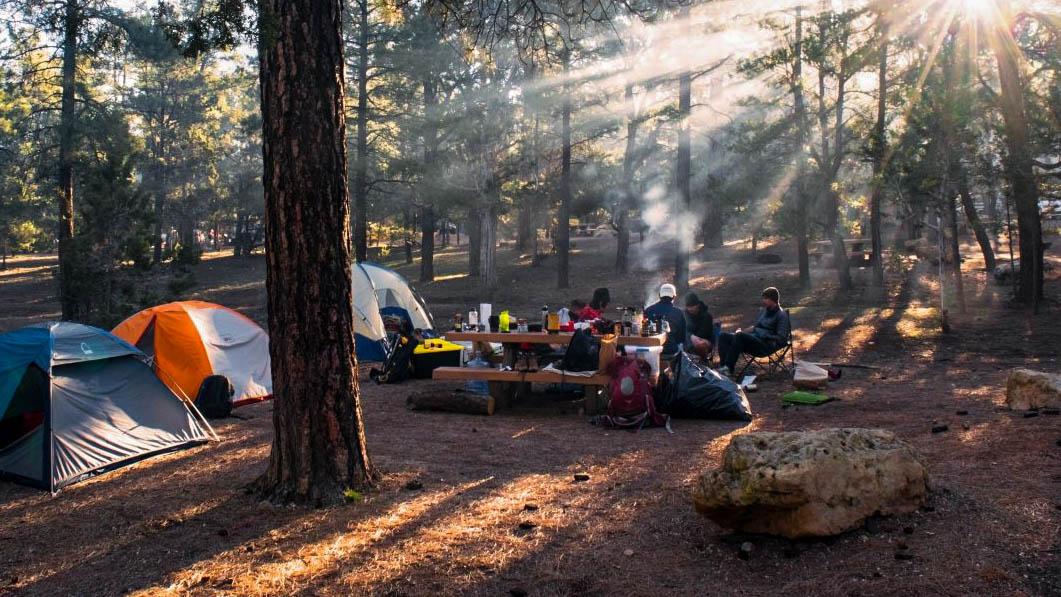 camping-alr-c169-1-.jpg