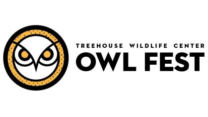 treehouse-owlfest.jpg