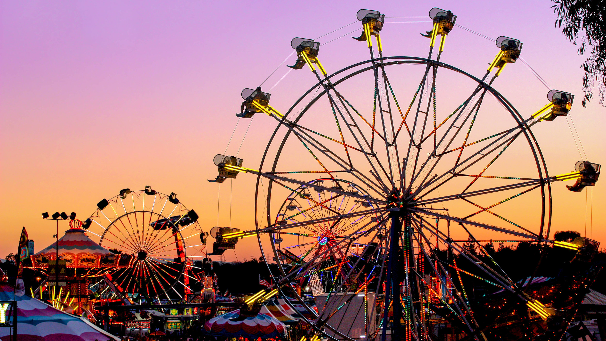 county-fair-5-alr-c169.jpg