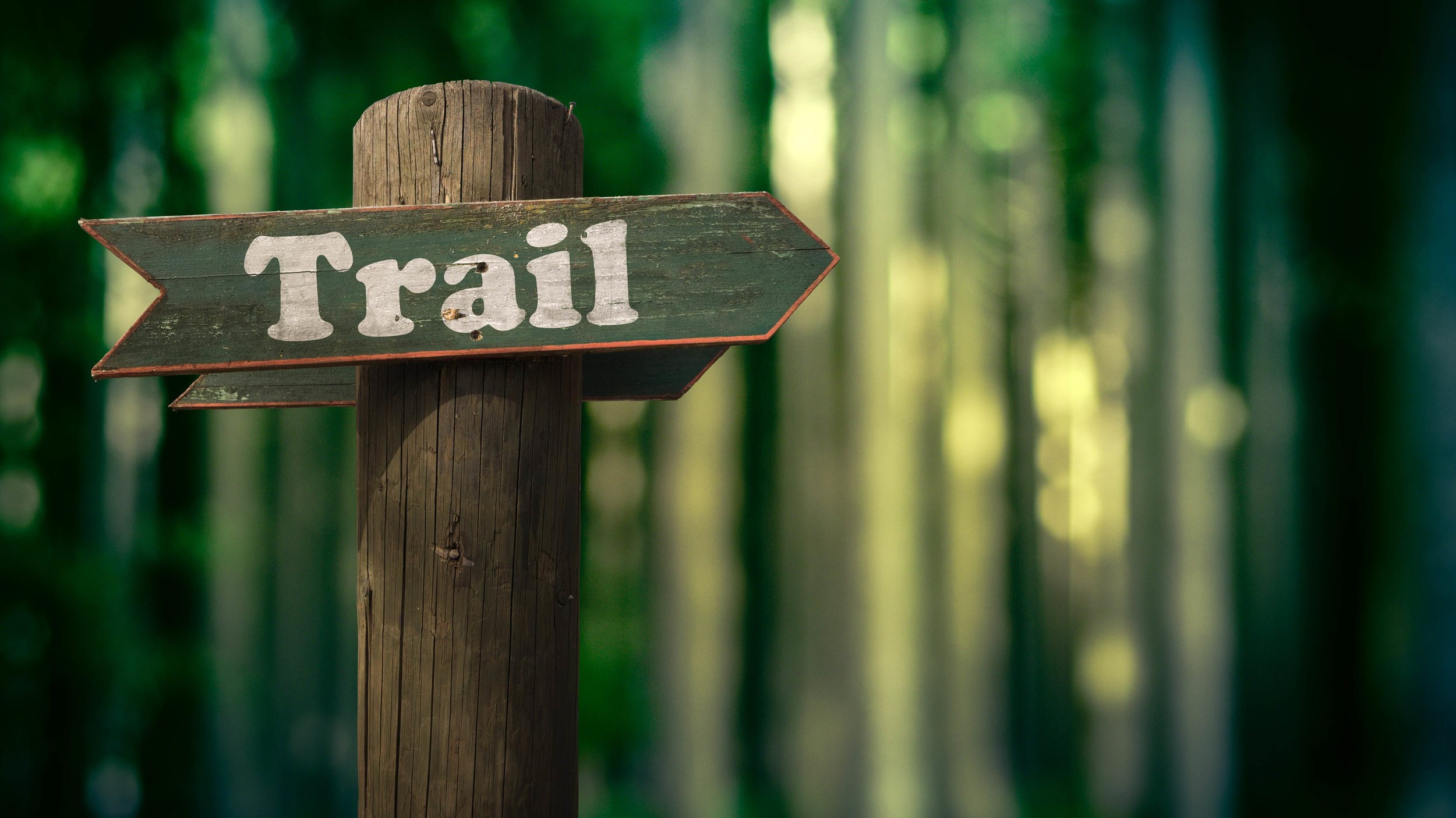 hiking-alr-c169-3.jpg