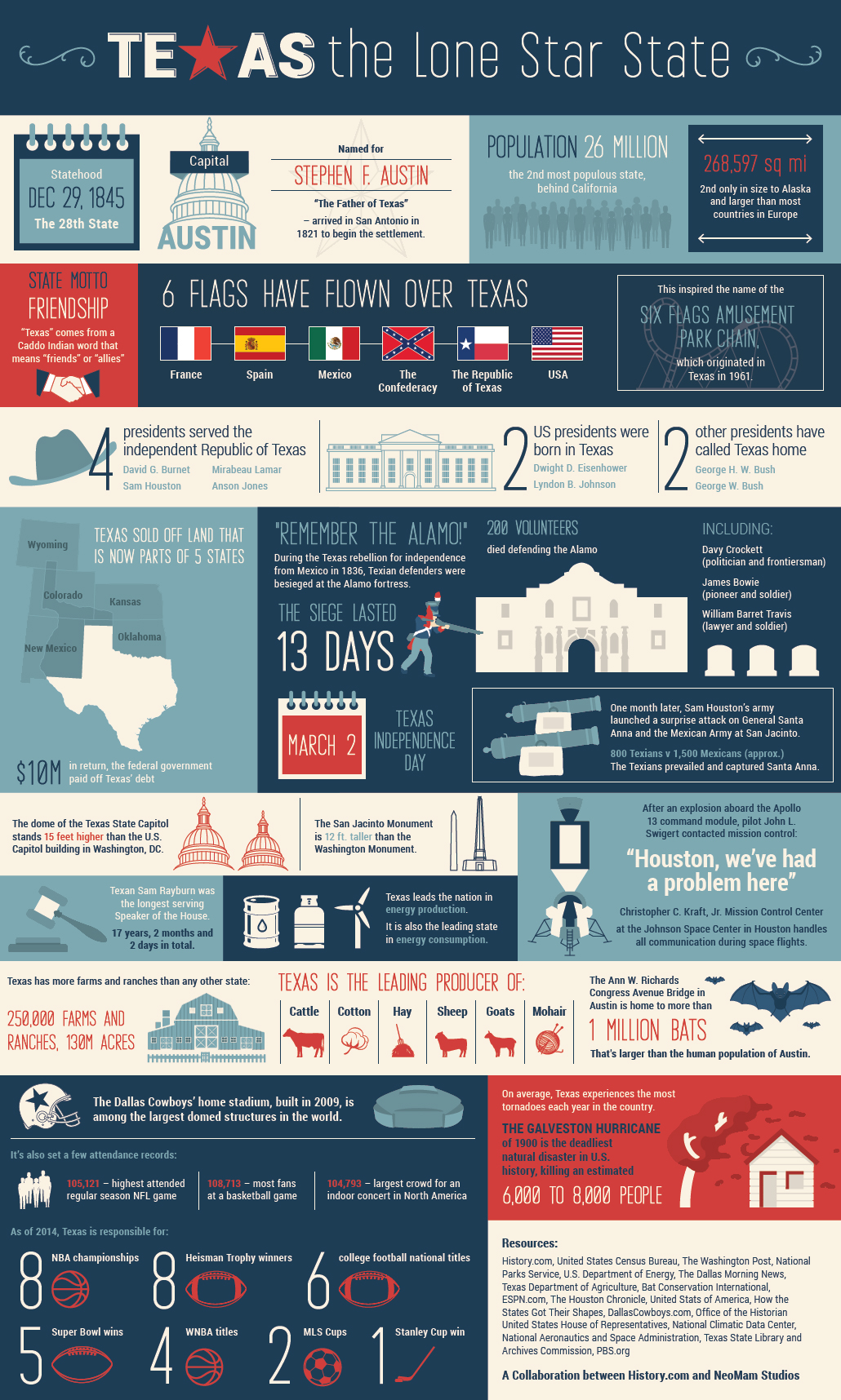 The Texas infographic