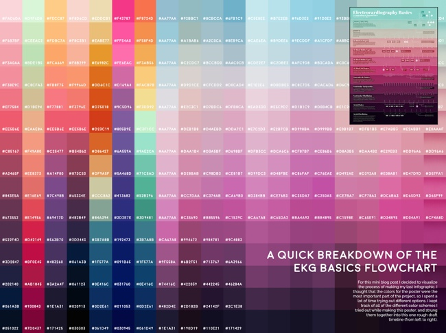 Electrocardiography+Basics+Color+Breakdown.jpg