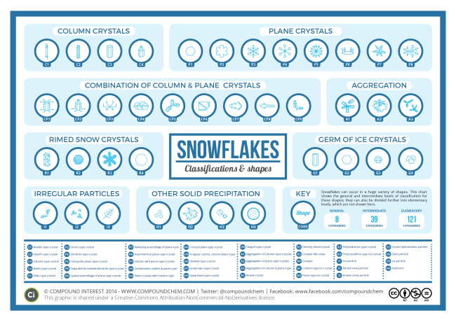 The Shapes of Snowflakes infographic