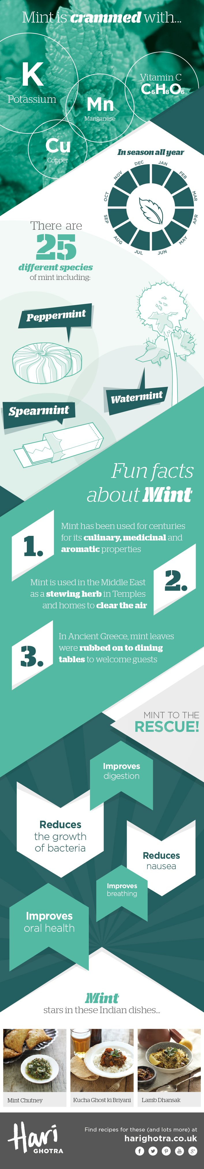 Chef Hari Ghotra's Key Ingredients Mint Infographic