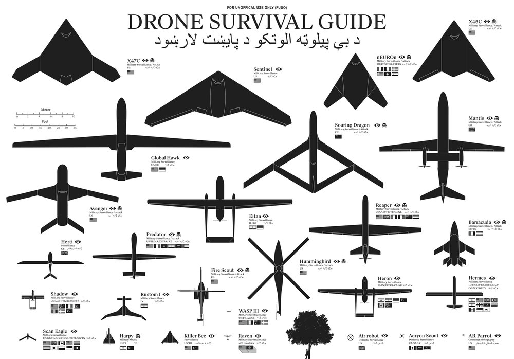 The Drone Survival Guide infographic