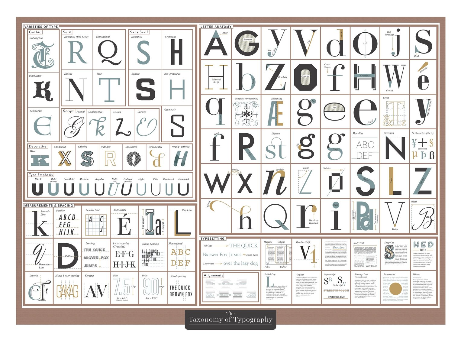 The Taxonomy of Typography