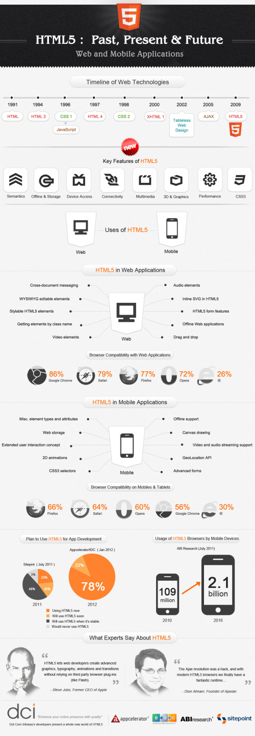 HTML5: Past, Present, Future infographic