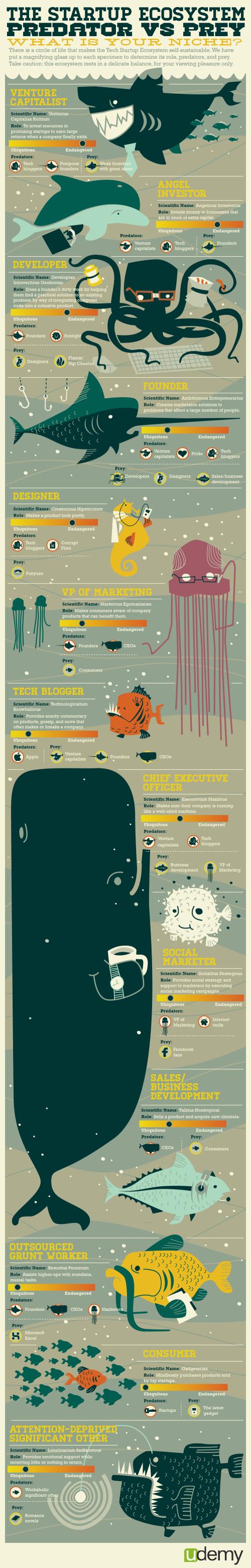 The Startup Ecosystem: Predator vs. Prey infographic