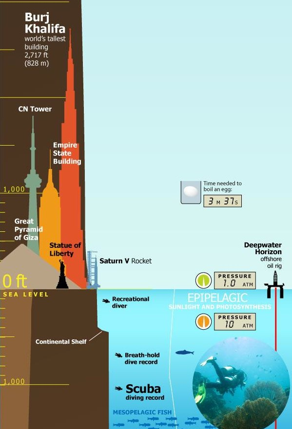 Infographic_+Tallest+Mountain+to+Deepest+Ocean+Trench-1.jpg
