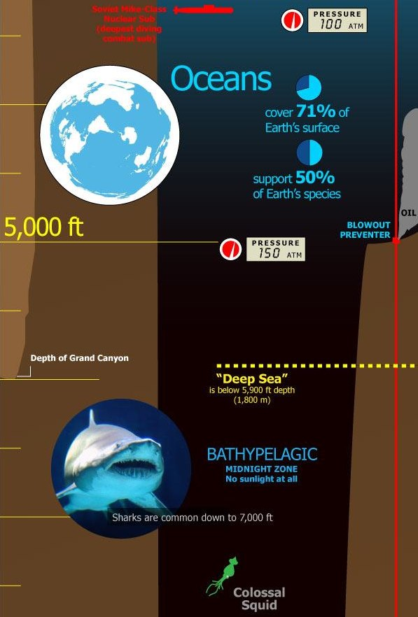 Infographic_+Tallest+Mountain+to+Deepest+Ocean+Trench-2.jpg