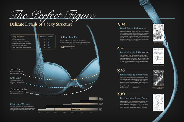 An Infographic Evolution of the Bra infographic
