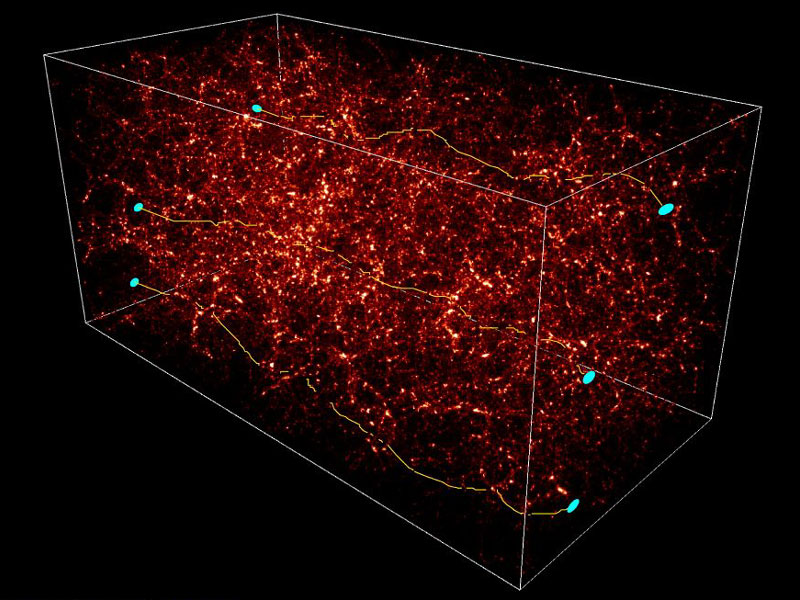 Dark Matter distorts light