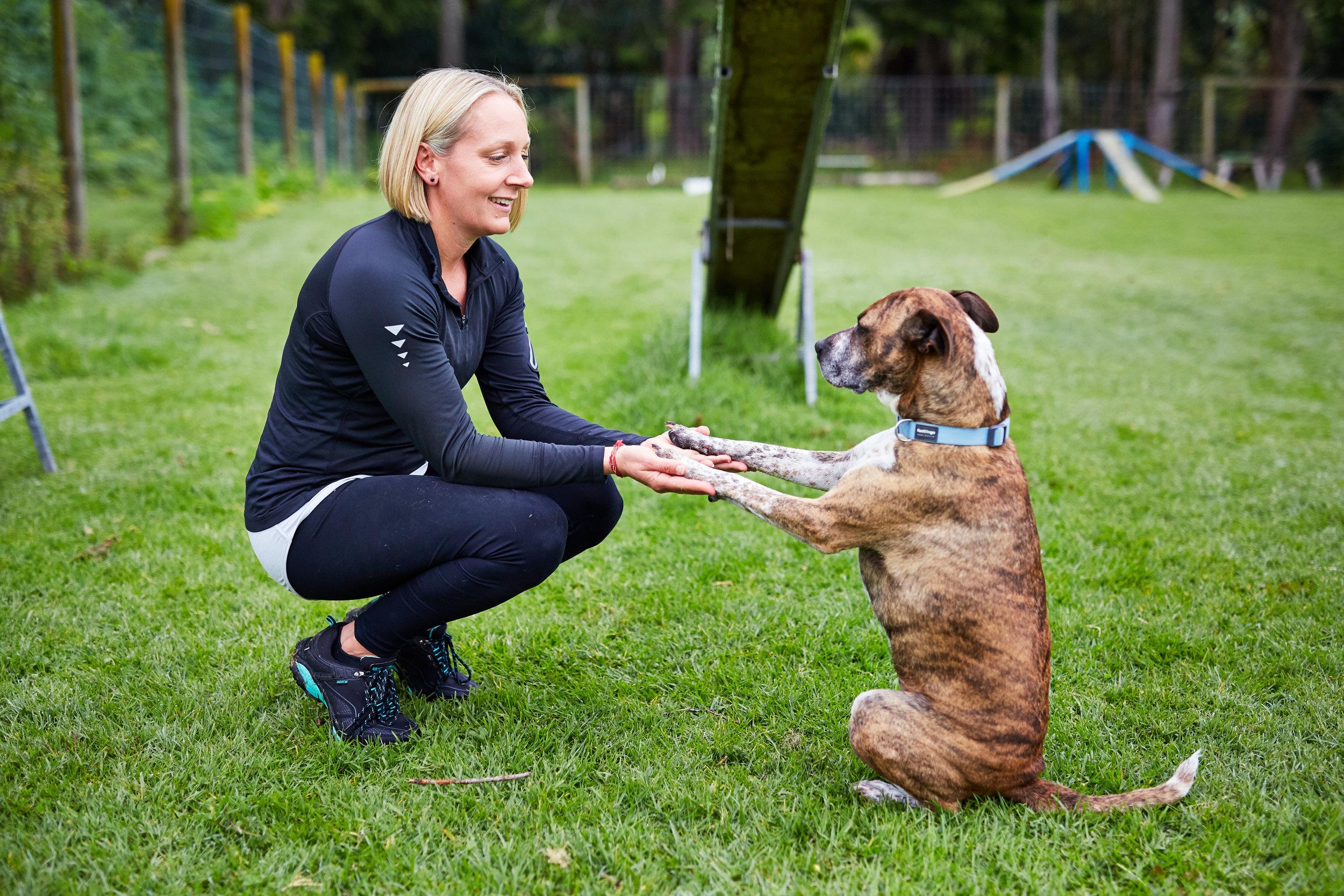 Dog training holding hands