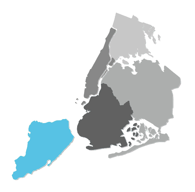 ny boroughs.jpg