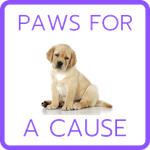 Paws for a Cause Team Building - Small.png
