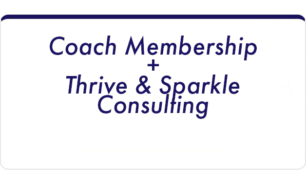 Optimize growth with your personalized action plan - Coach Membership, plus20 Weeks ConsultingIncludes a Bundling Discount Of 10%