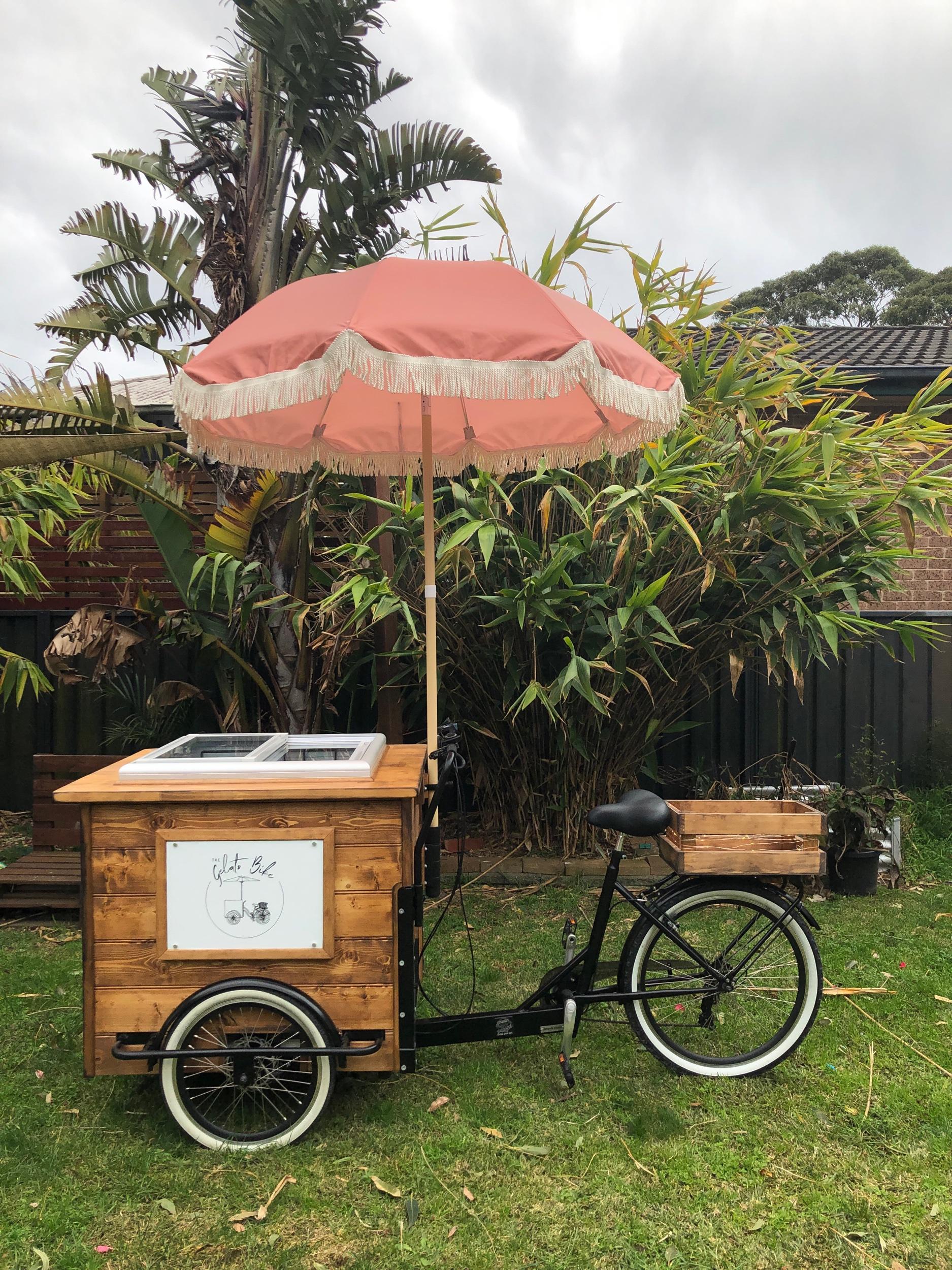 Wood Bike - Coral ☂️