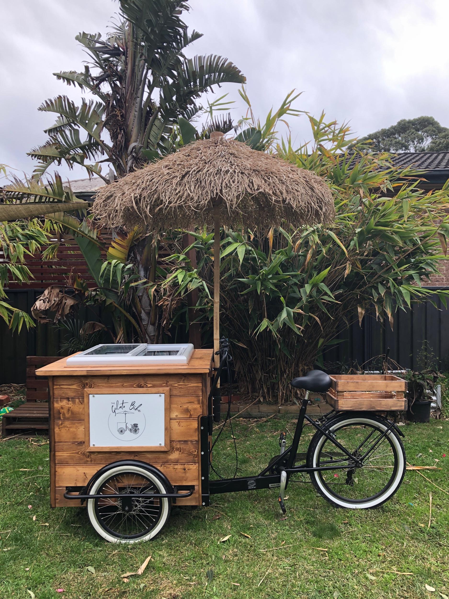 Wood Bike - Seagrass ☂️
