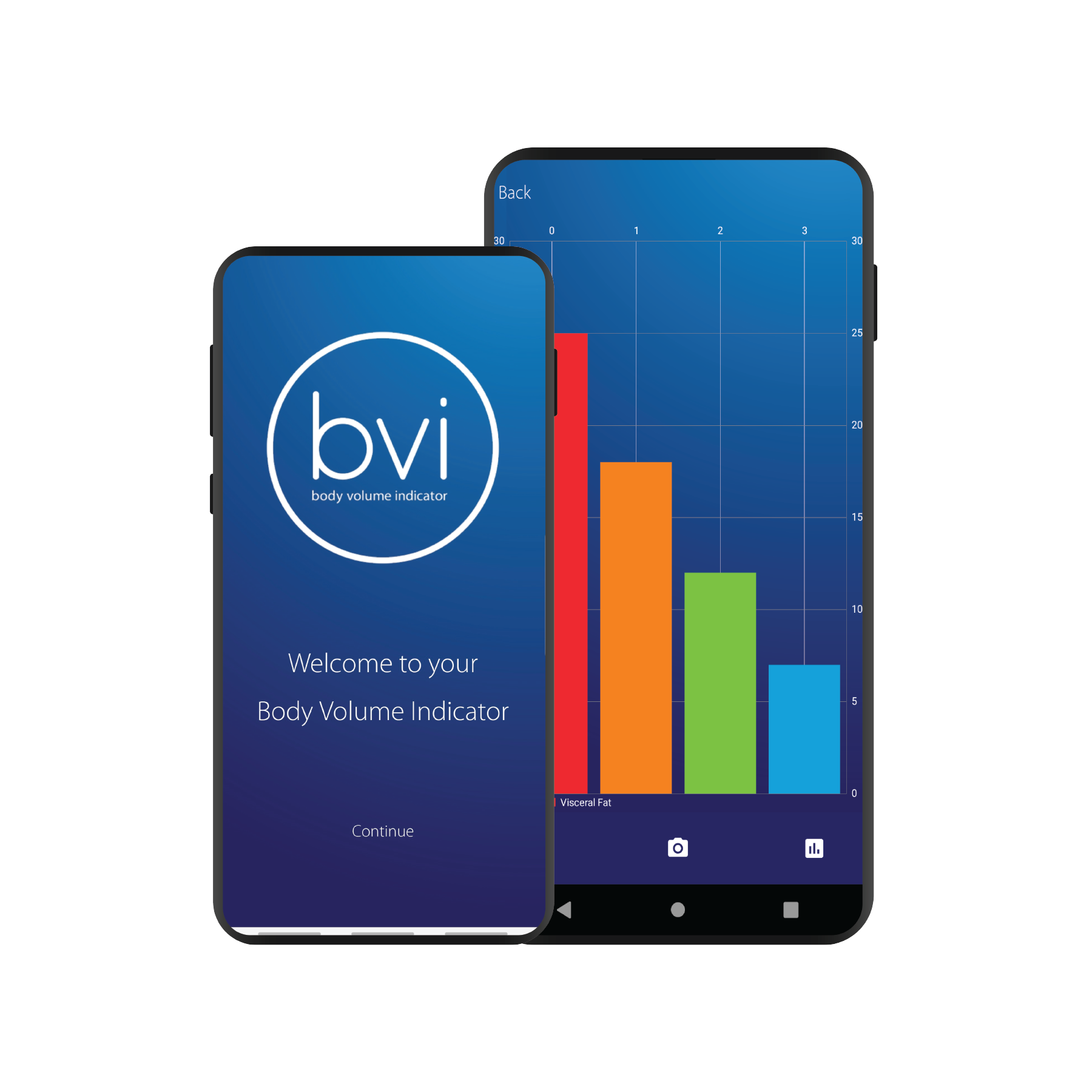 BVI Web Img 2.png