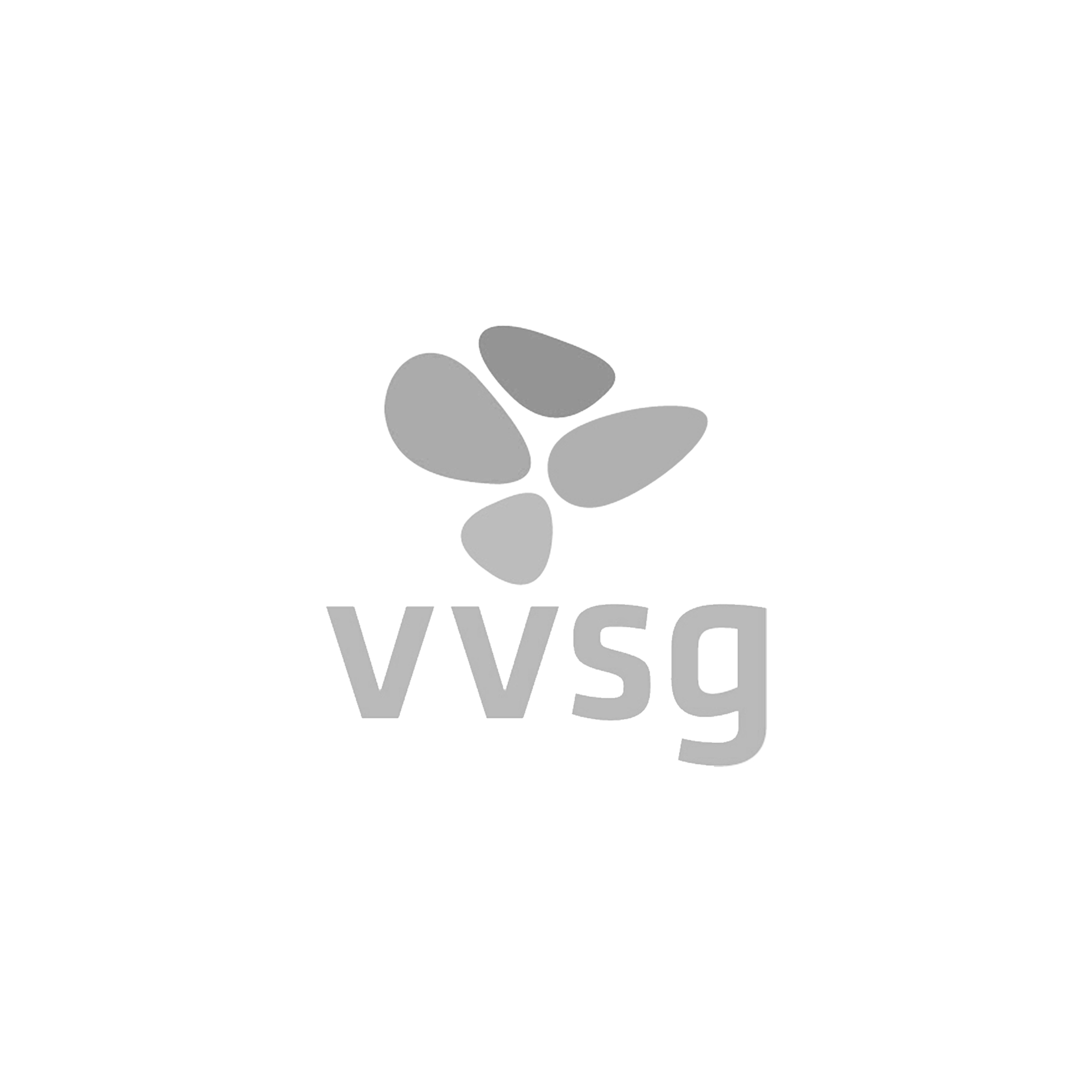 Partners-vvsg-BW.png