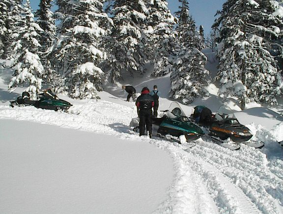 Enjoy snowmobiling in the back country.