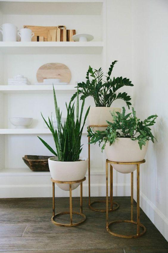|  My Home Decor Guide  |