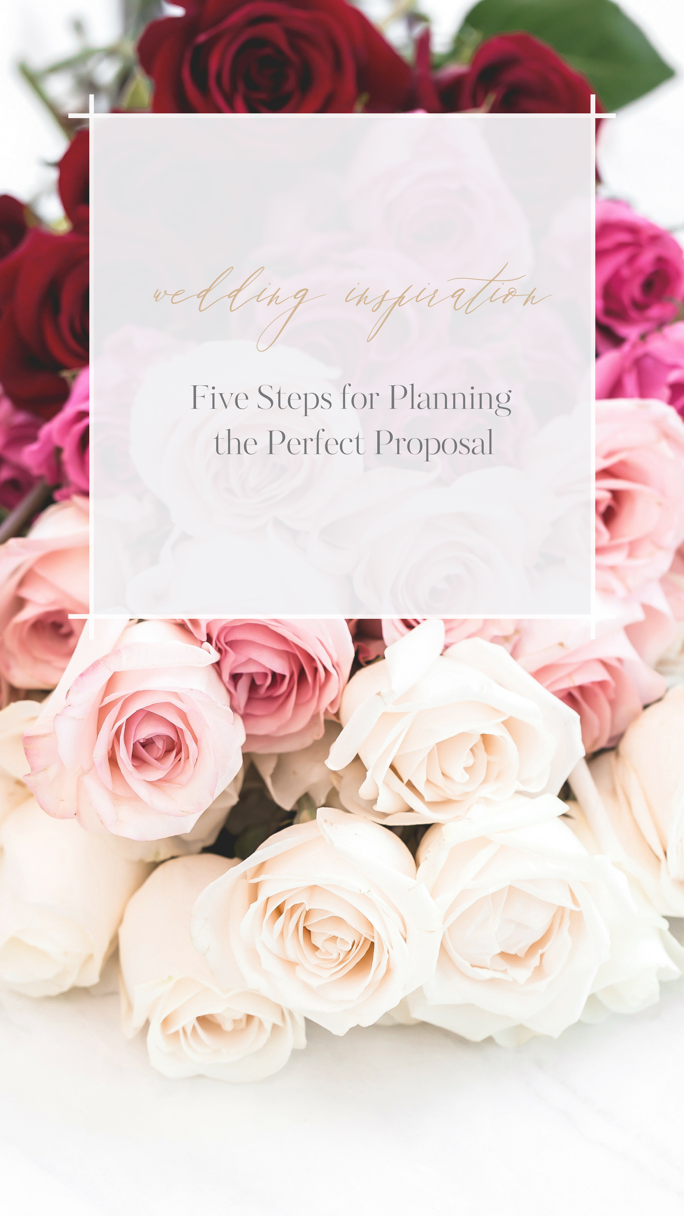 Five Steps for Planning the Perfect Proposal Calgary Wedding Planner YYC Wedding Planner Canmore Wedding Planner Banff Wedding Planner Lake Louise Wedding Planner