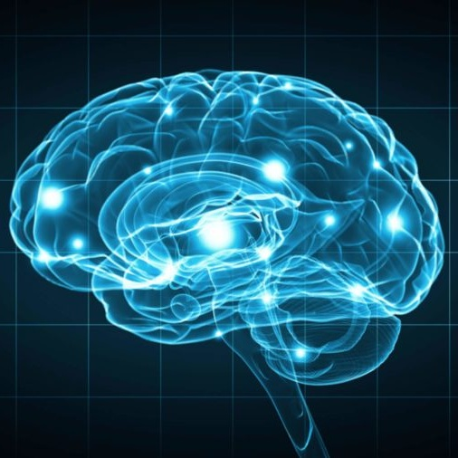 How music and the performing arts improve your child's brain - Click to find out more