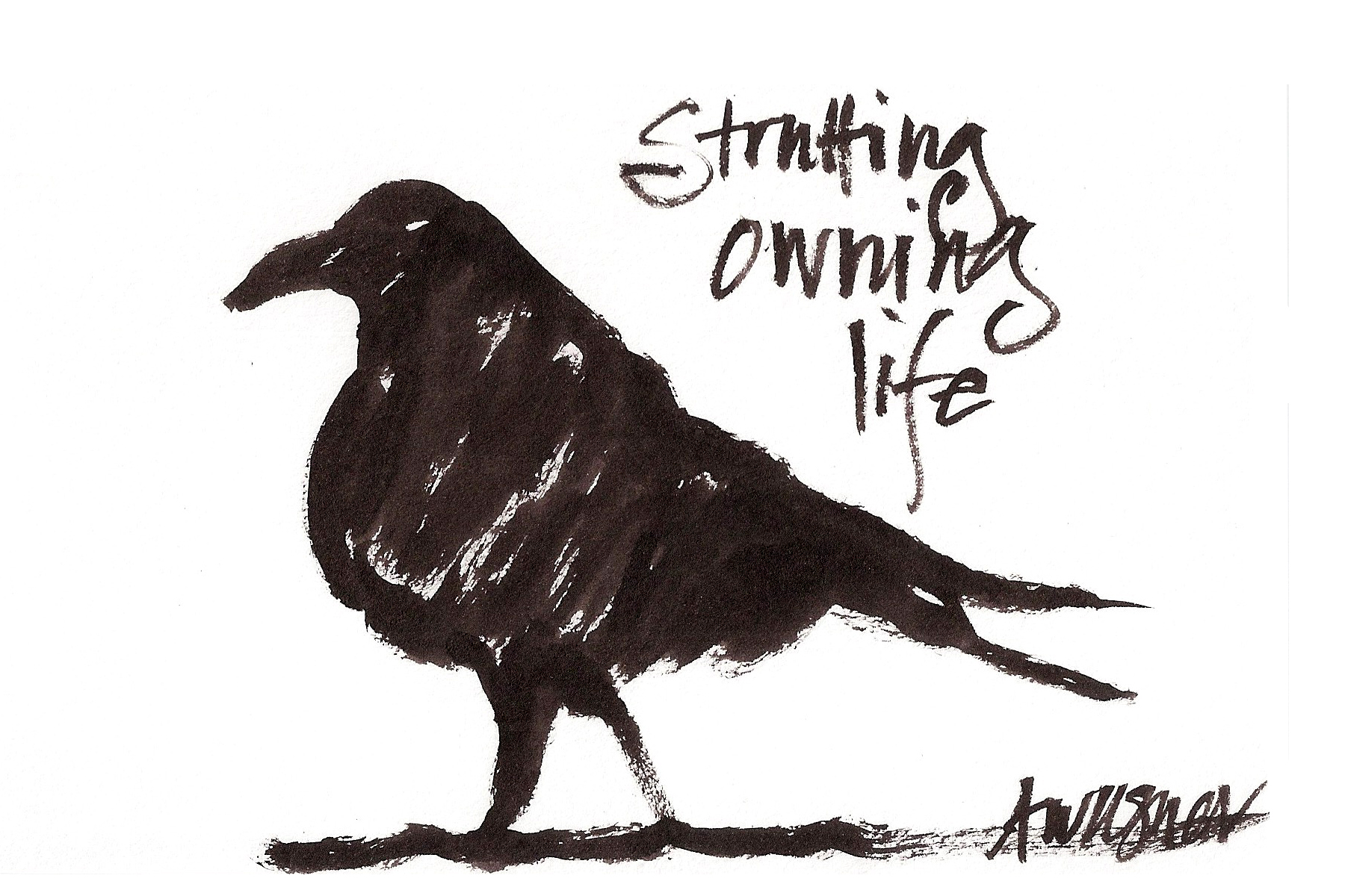 crow strutting owning life.jpg