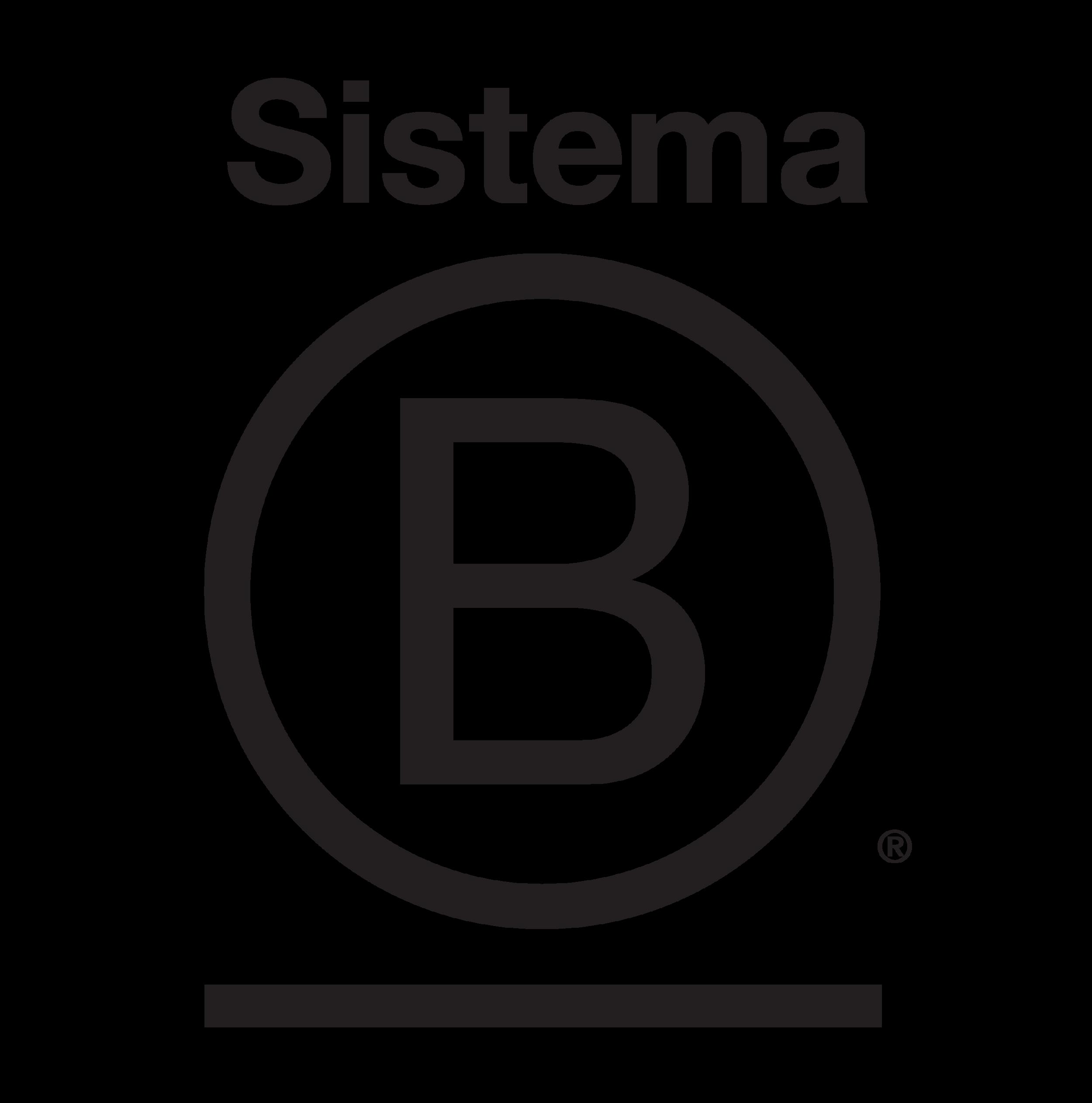 SISTEMA B.png